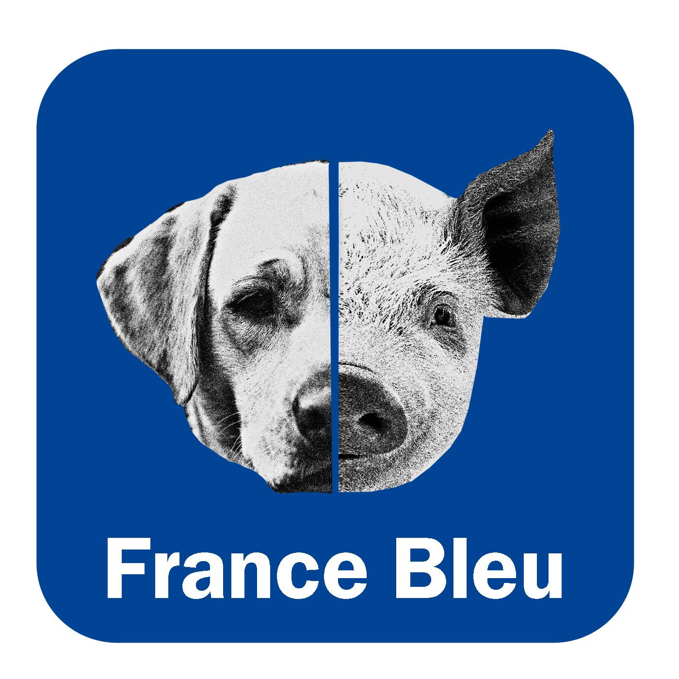 Meitat chen, meitat porc France Bleu Périgord