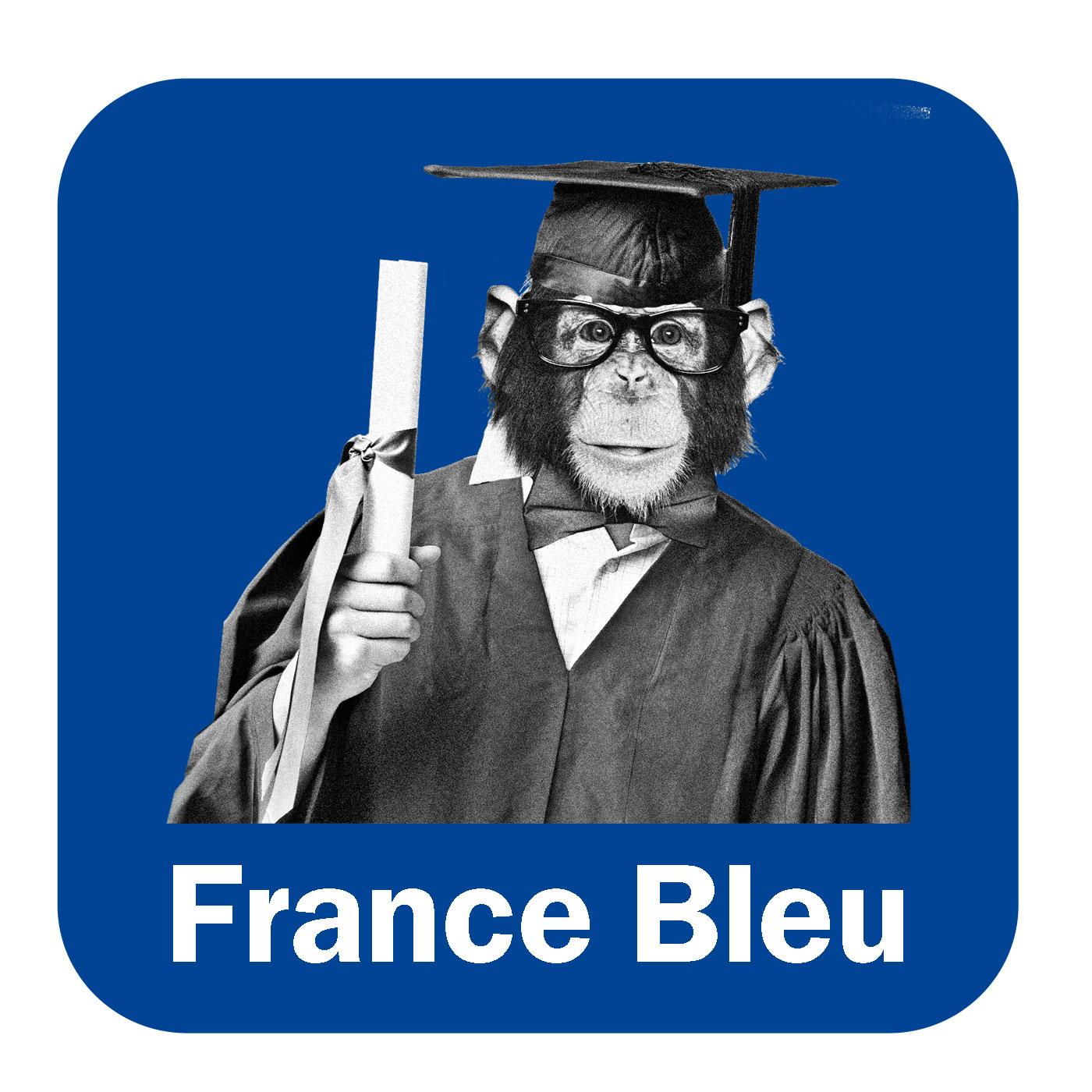 Les Génies de la Sarthe France Bleu Maine