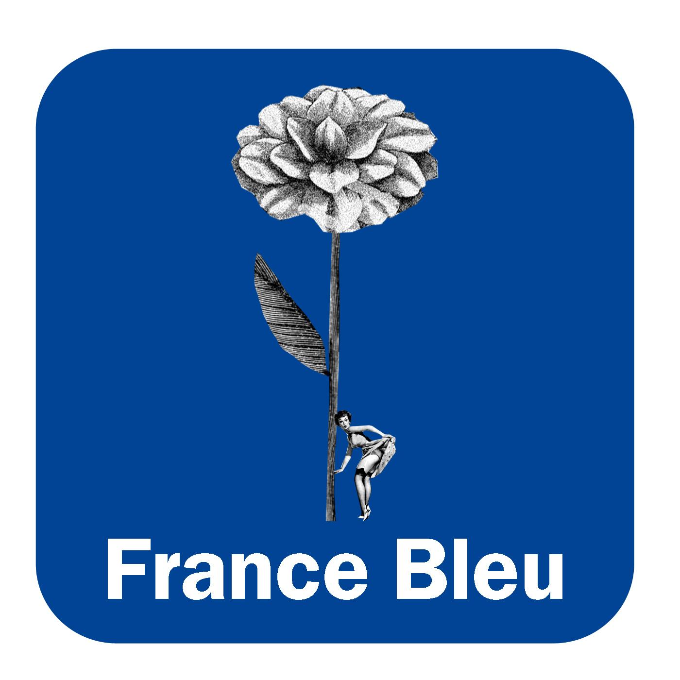 Le jardin de France Bleu Lorraine Nord
