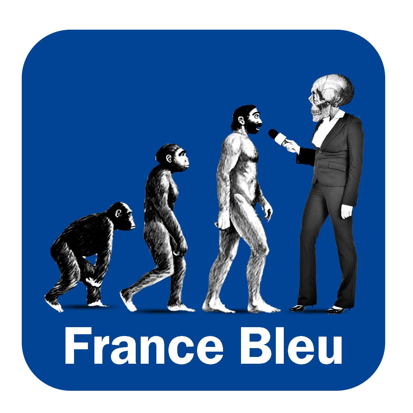 Les experts vétérinaire France Bleu Provence